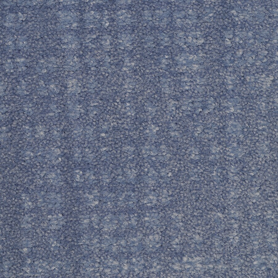 STAINMASTER Trusoft Pine Chapel Proximity Interior Carpet
