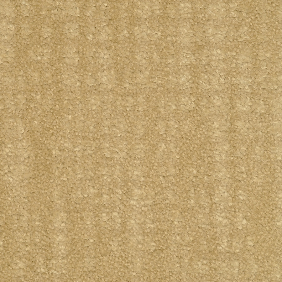 STAINMASTER TruSoft Pine Chapel Tapestry Cut and Loop Indoor Carpet