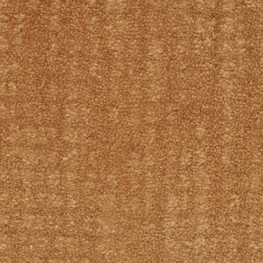 STAINMASTER Trusoft Pine Chapel Saba Interior Carpet