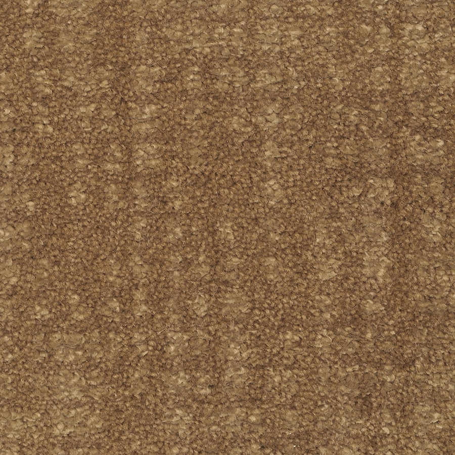 STAINMASTER TruSoft Pine Chapel Proud Charm Cut and Loop Indoor Carpet