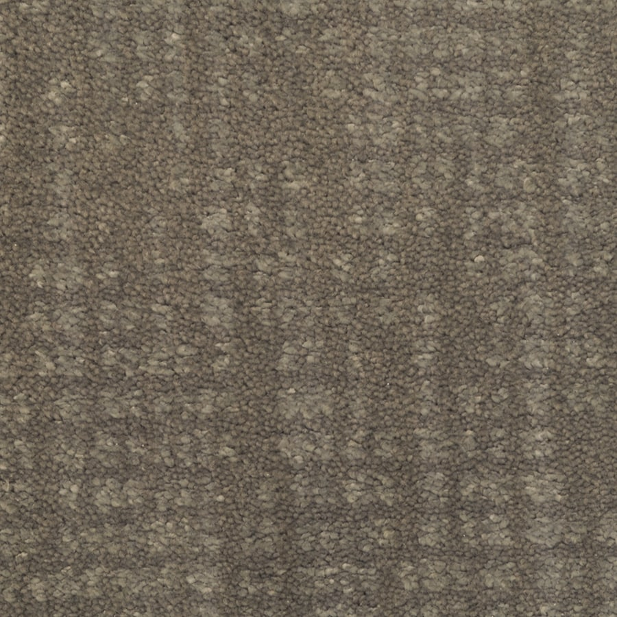 STAINMASTER TruSoft Pine Chapel Jazzy Interior Carpet