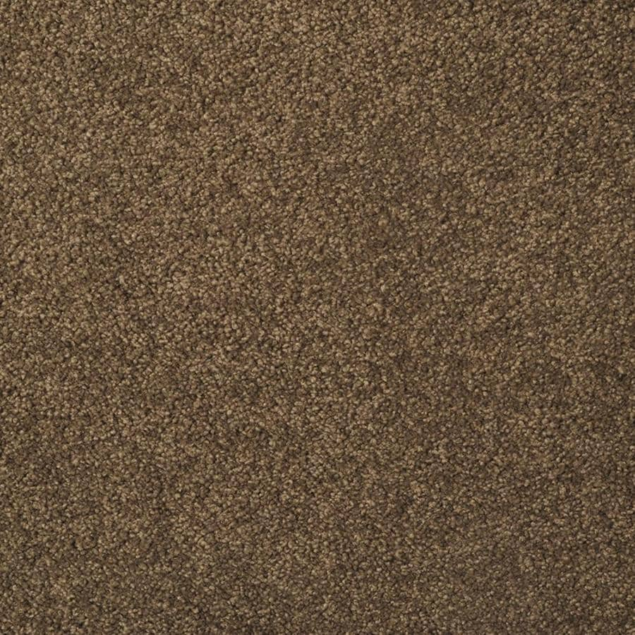 STAINMASTER TruSoft Best Of Class Coffee Bean Plush Interior Carpet