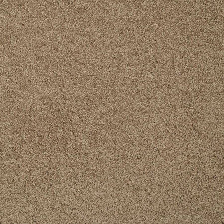 STAINMASTER TruSoft Best of Class Brown Log Plush Indoor Carpet