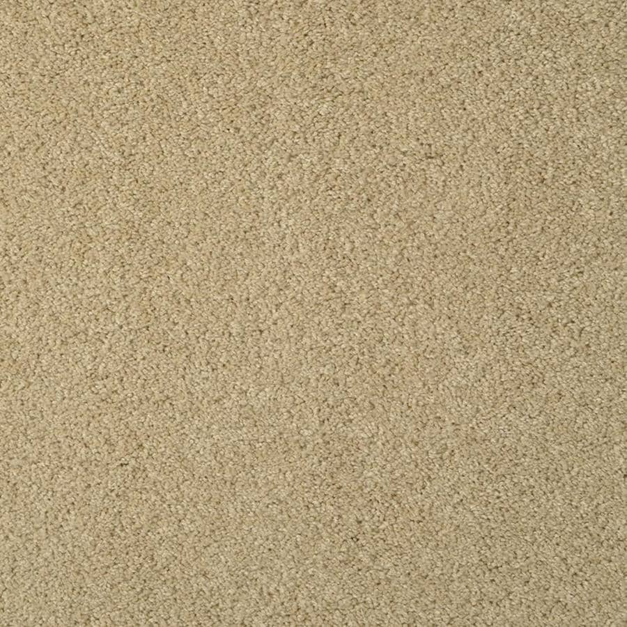 STAINMASTER TruSoft Best of Class 12-ft W x Cut-to-Length Wild Mushroom Plush Interior Carpet