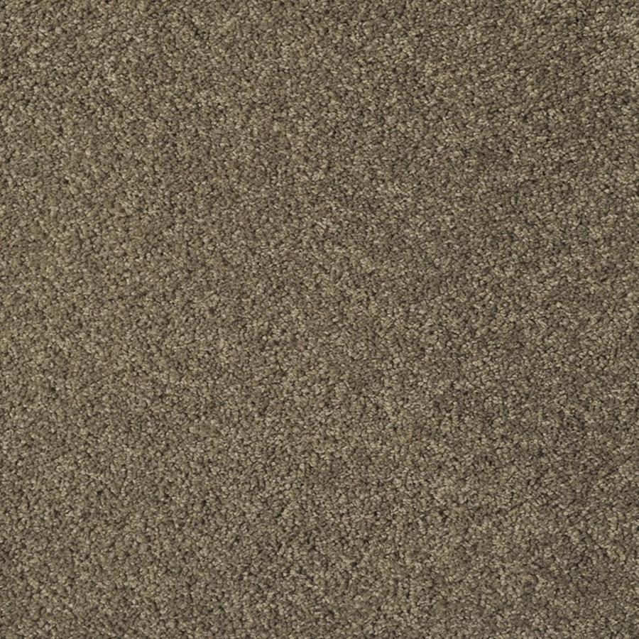 STAINMASTER TruSoft Best Of Class Square Dance Plush Interior Carpet