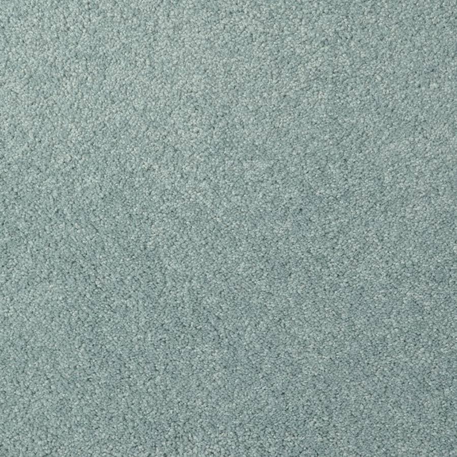 STAINMASTER TruSoft Best Of Class Delta Plush Interior Carpet