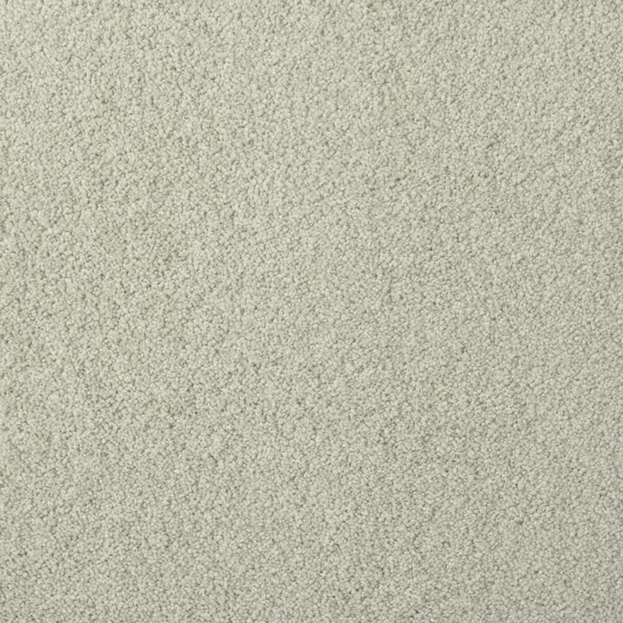 STAINMASTER TruSoft Best of Class Sea Spray Plush Indoor Carpet