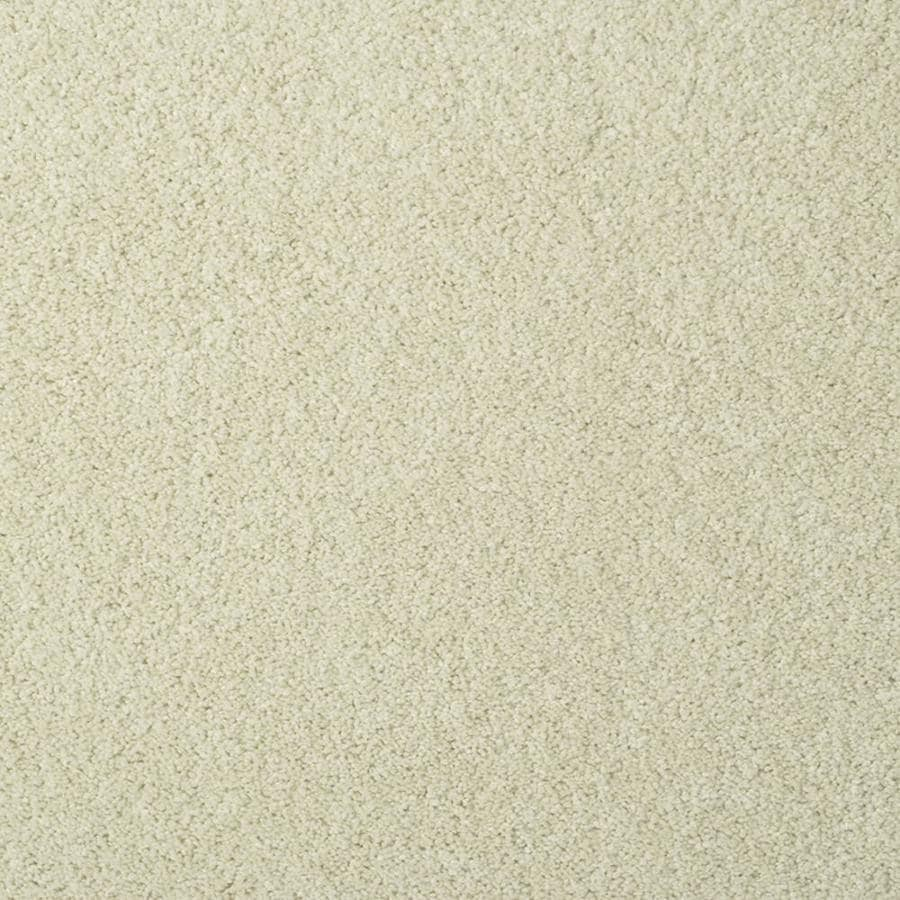 STAINMASTER TruSoft Best of Class Pastel Plush Indoor Carpet