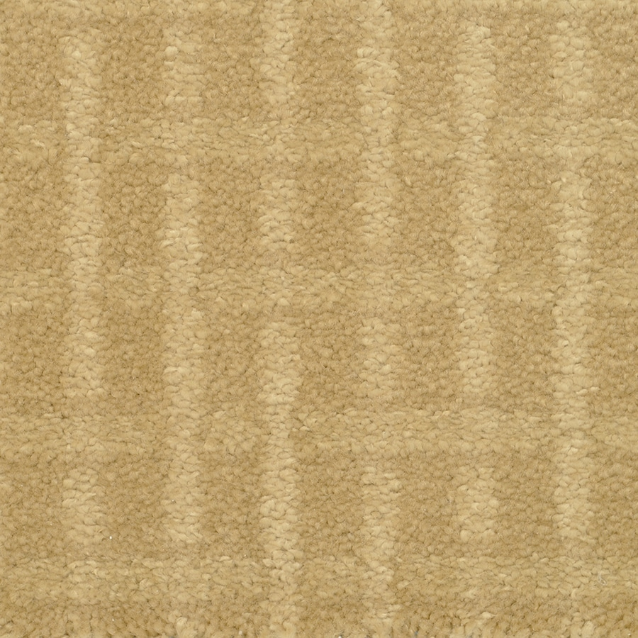 STAINMASTER TruSoft Chateau Avalon Tapestry Cut and Loop Indoor Carpet