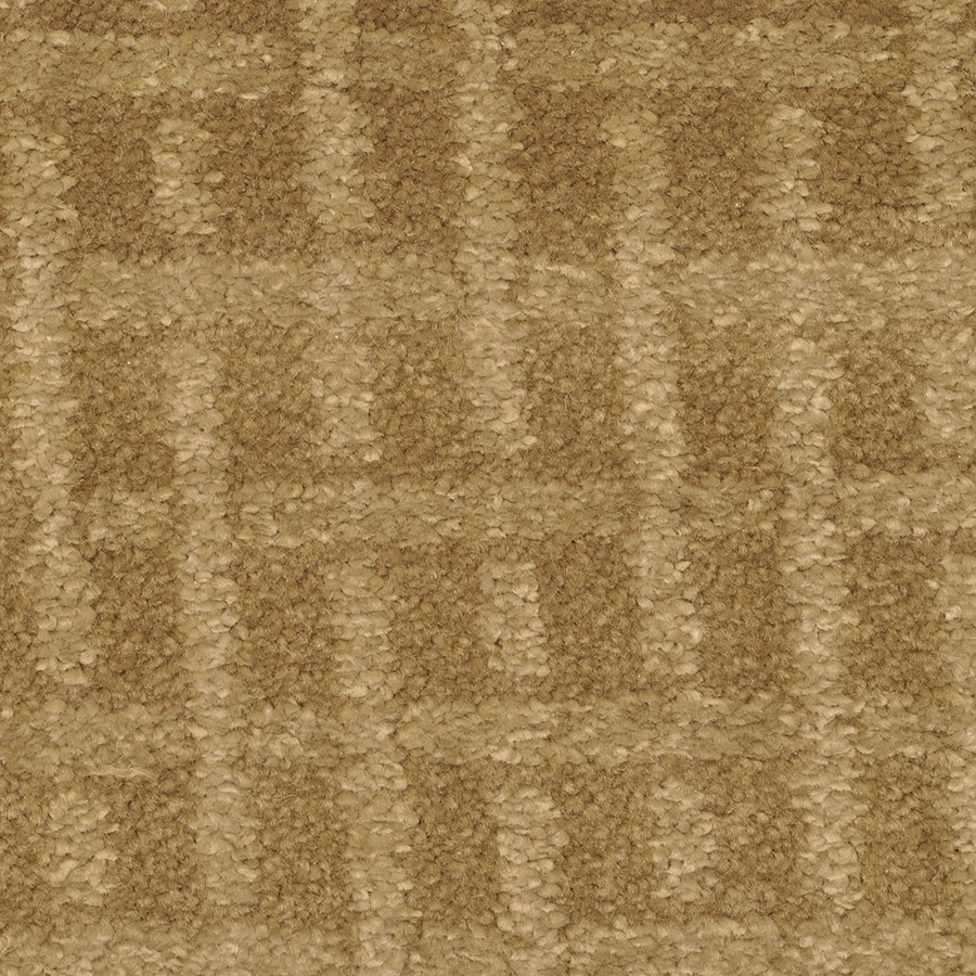 STAINMASTER TruSoft Chateau Avalon Island Reef Cut and Loop Indoor Carpet