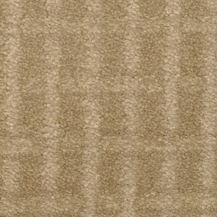 STAINMASTER Trusoft Chateau Avalon Tart Interior Carpet