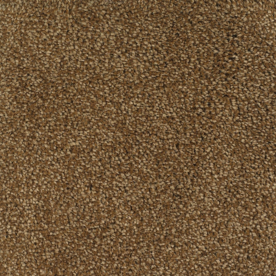 STAINMASTER Pleasant Point Smooth Stone Rectangular Indoor Tufted Area Rug (Common: 8 x 10; Actual: 96-in W x 120-in L)