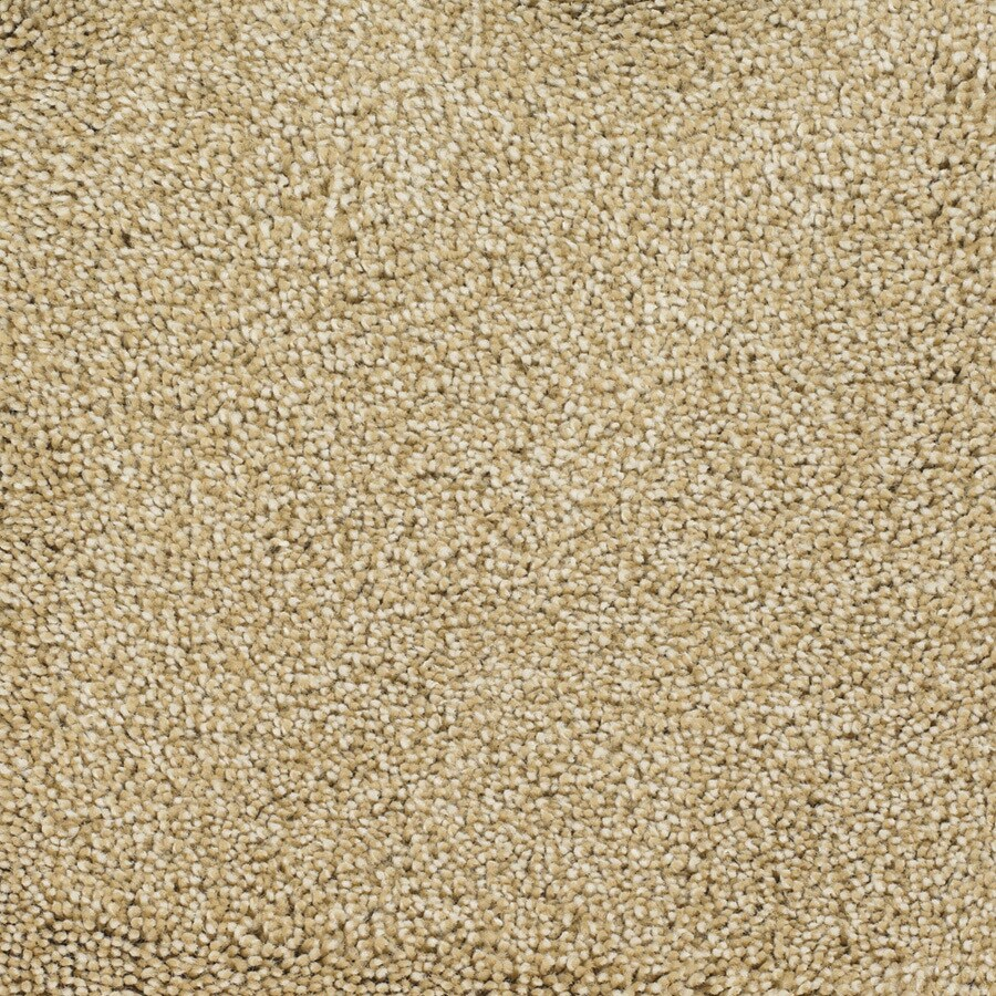 STAINMASTER Shafer Valley Horseshoe Rectangular Indoor Tufted Area Rug (Common: 8 x 10; Actual: 96-ft W x 120-ft L)