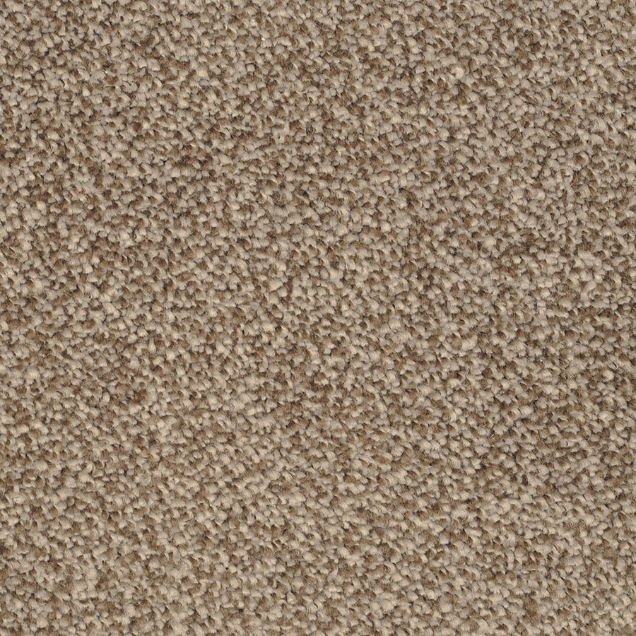 STAINMASTER Briar Patch Pebbled Shore Rectangular Indoor Tufted Area Rug (Common: 8 x 10; Actual: 96-ft W x 120-ft L)