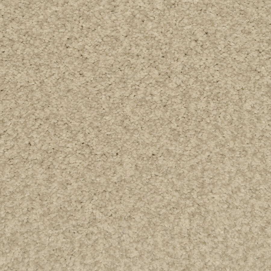 STAINMASTER Informal Affair China Rectangular Indoor Tufted Area Rug (Common: 6 x 9; Actual: 72-in W x 108-in L)