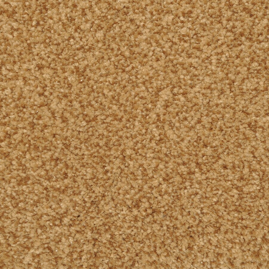 STAINMASTER Fiesta Cavern Rectangular Indoor Tufted Area Rug (Common: 6 x 9; Actual: 6-ft W x 9-ft L)