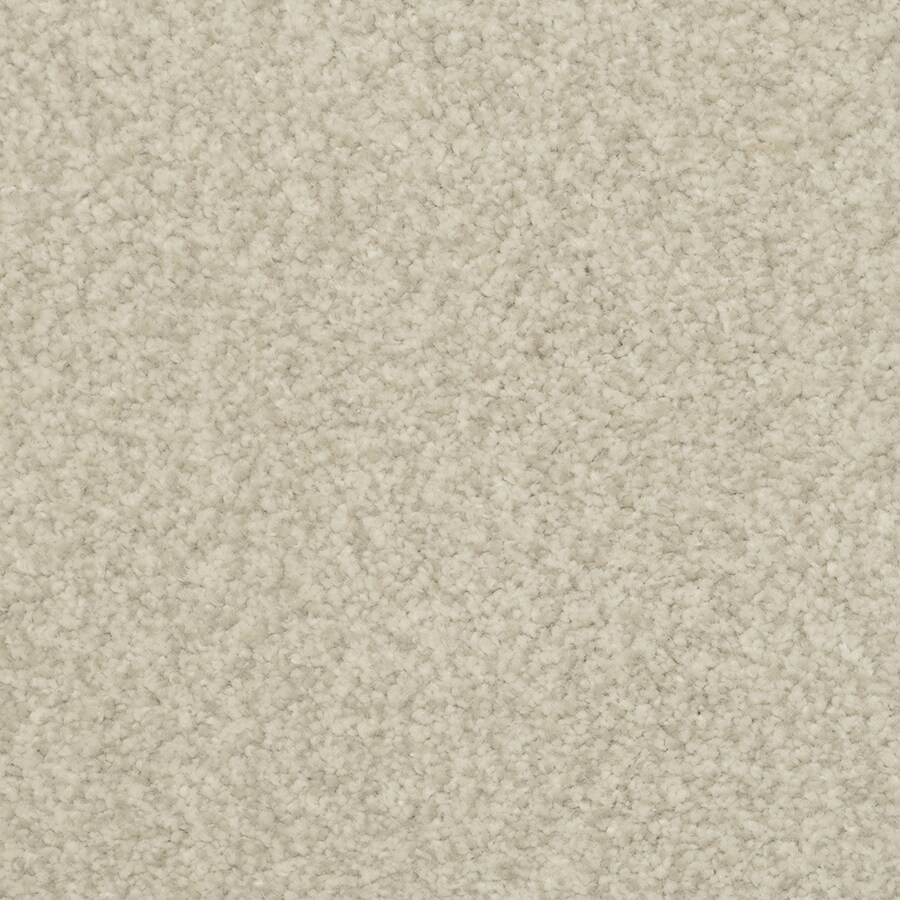STAINMASTER Special Occasion Plover Rectangular Indoor Tufted Area Rug (Common: 6 x 9; Actual: 72-ft W x 108-ft L)