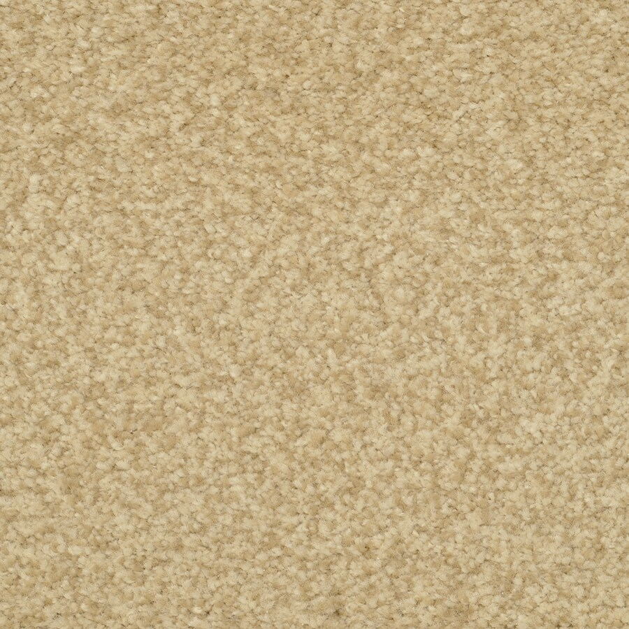 STAINMASTER Special Occasion Buckwheat Rectangular Indoor Tufted Area Rug (Common: 8 x 10; Actual: 96-in W x 120-in L)