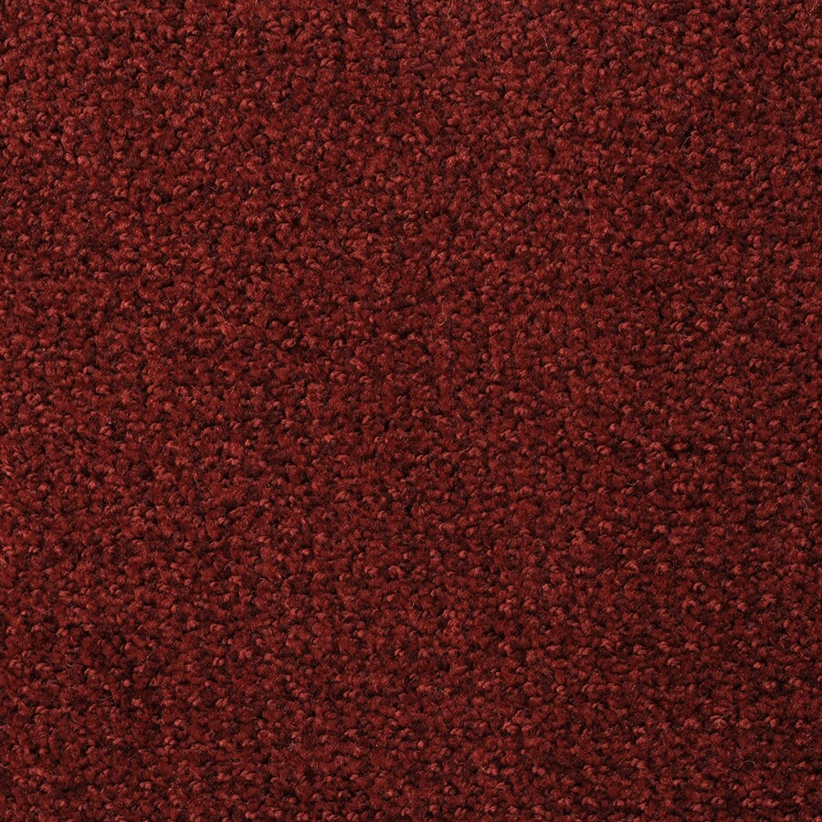 STAINMASTER Morning Jewel Berry Frappe Rectangular Indoor Tufted Area Rug (Common: 6 x 9; Actual: 72-ft W x 108-ft L)