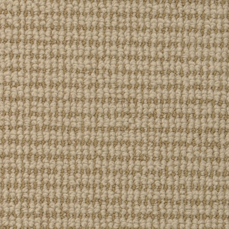 STAINMASTER Morning Glory Desert Dusk Rectangular Indoor Tufted Area Rug (Common: 8 x 10; Actual: 96-in W x 120-in L)