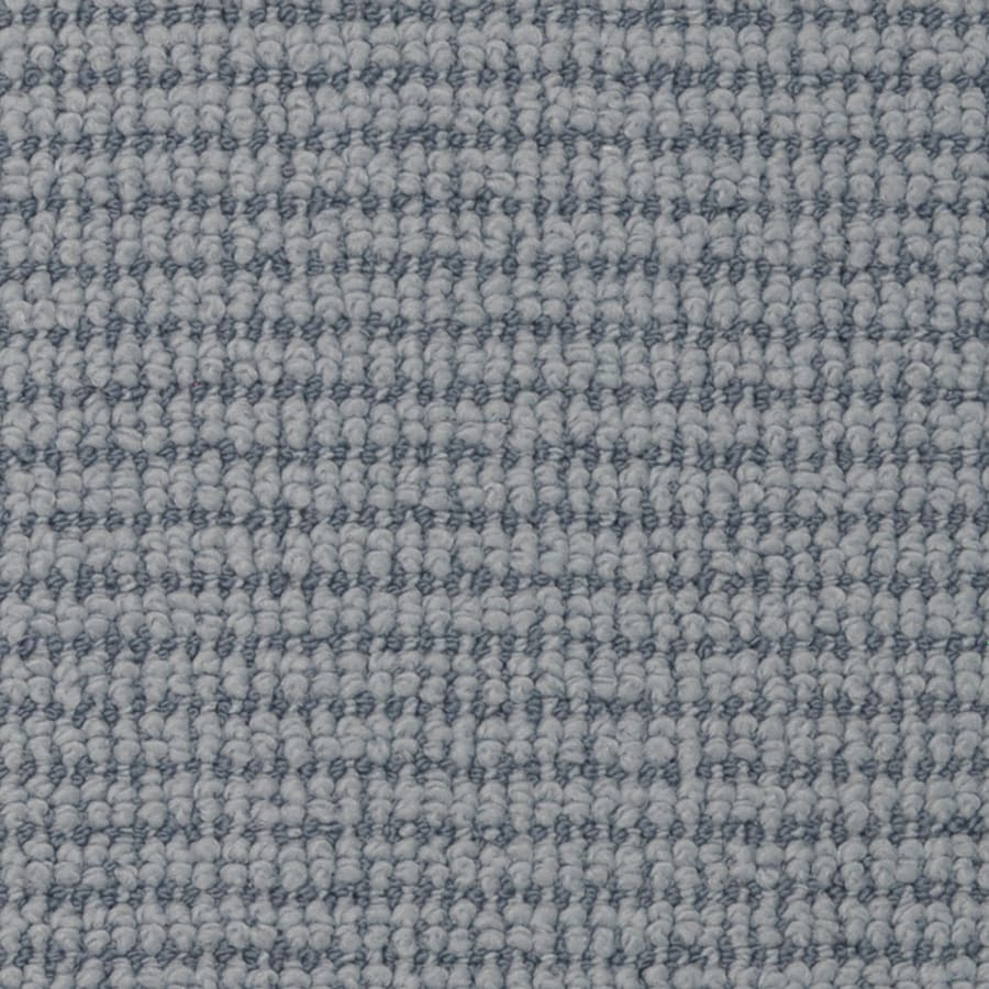 STAINMASTER Morning Glory India Ink Rectangular Indoor Area Rug (Common: 8 x 10; Actual: 8-ft W x 10-ft L)