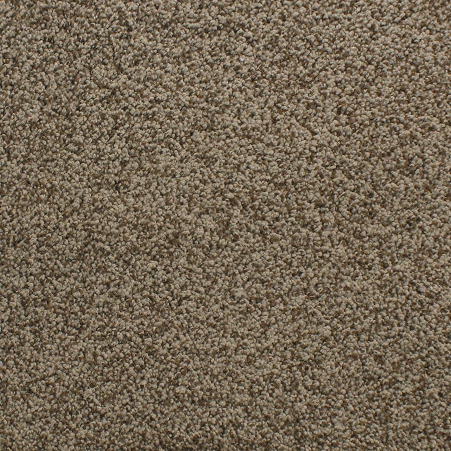 STAINMASTER Exuberance III Binge Rectangular Indoor Area Rug (Common: 6 x 9; Actual: 6-ft W x 9-ft L)