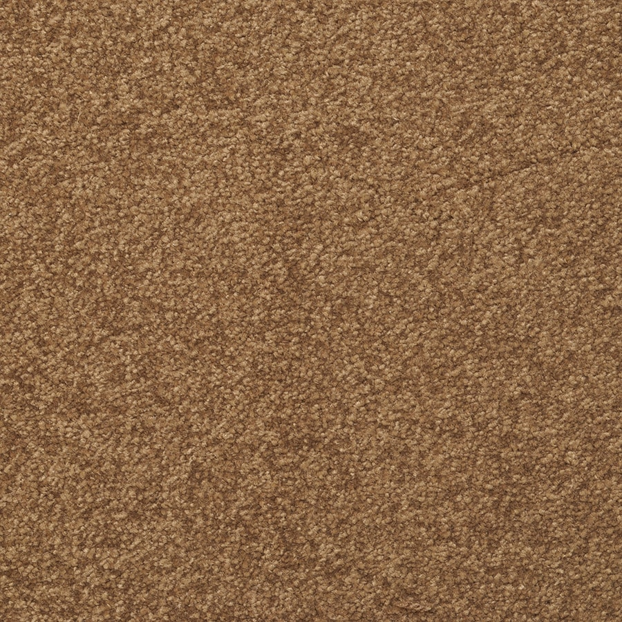 STAINMASTER Influential Chestnut Rectangular Indoor Tufted Area Rug (Common: 8 x 10; Actual: 96-in W x 120-in L)