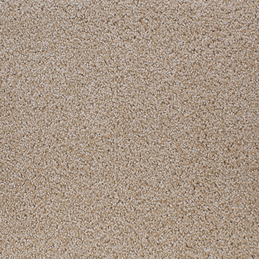STAINMASTER Oak Grove Brim Rectangular Indoor Tufted Area Rug (Common: 8 x 10; Actual: 96-in W x 120-in L)