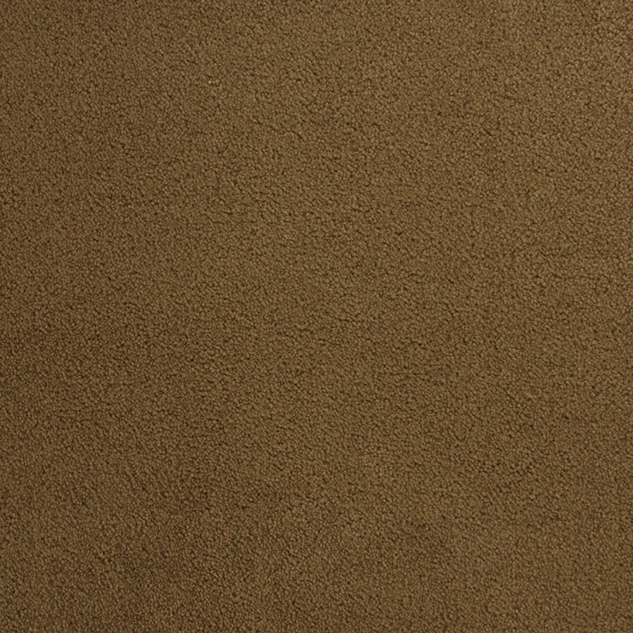 STAINMASTER Capri Place Traction Rectangular Indoor Tufted Area Rug (Common: 6 x 9; Actual: 6-ft W x 9-ft L)