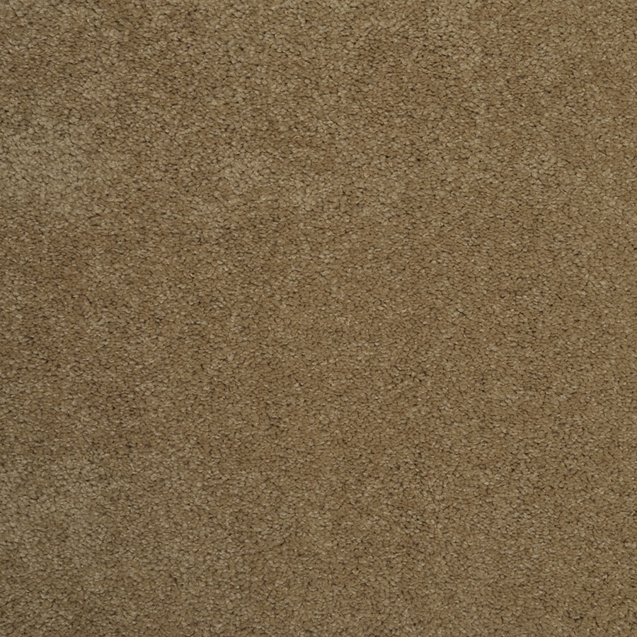 STAINMASTER Best of Class Double Khaki Rectangular Indoor Area Rug (Common: 6 x 9; Actual: 6-ft W x 9-ft L)