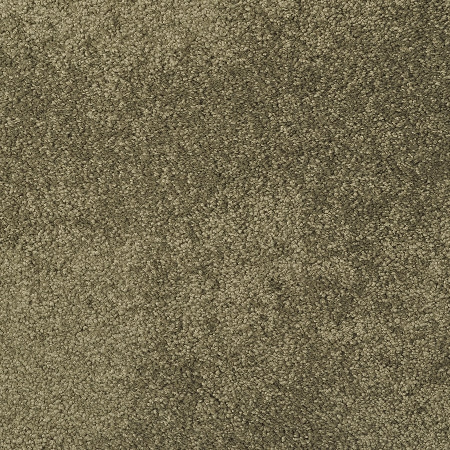 STAINMASTER Best Of Class Sawgrass Rectangular Indoor Tufted Area Rug (Common: 6 x 9; Actual: 6-ft W x 9-ft L)
