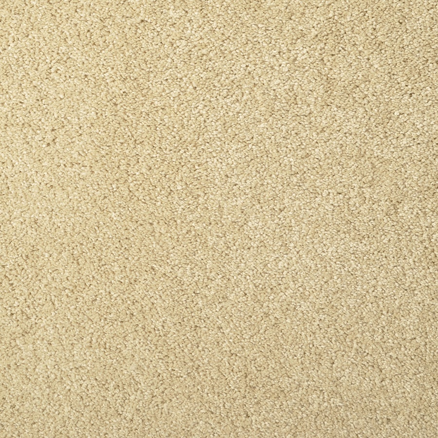 STAINMASTER Best Of Class Sand Dollar Rectangular Indoor Tufted Area Rug (Common: 6 x 9; Actual: 72-in W x 108-in L)