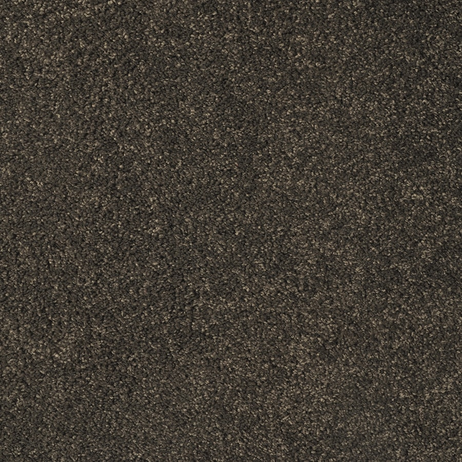 STAINMASTER Best Of Class Cane Wood Rectangular Indoor Tufted Area Rug (Common: 6 x 9; Actual: 6-ft W x 9-ft L)
