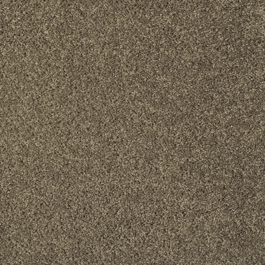 STAINMASTER Best Of Class Square Dance Rectangular Indoor Tufted Area Rug (Common: 8 x 10; Actual: 96-in W x 120-in L)