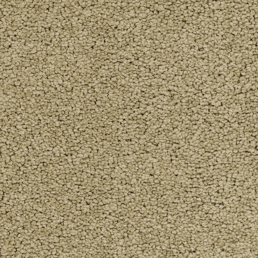 STAINMASTER Active Family Astral Joyous Textured Indoor Carpet