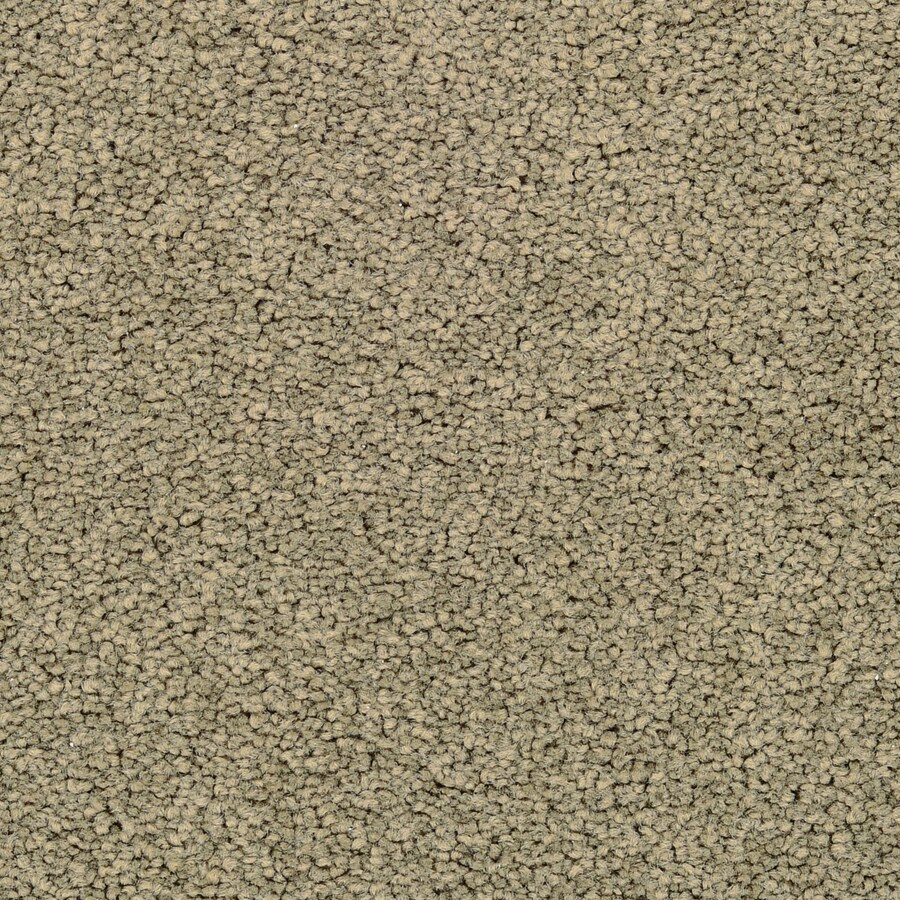 STAINMASTER Active Family Astral Lantana Textured Indoor Carpet