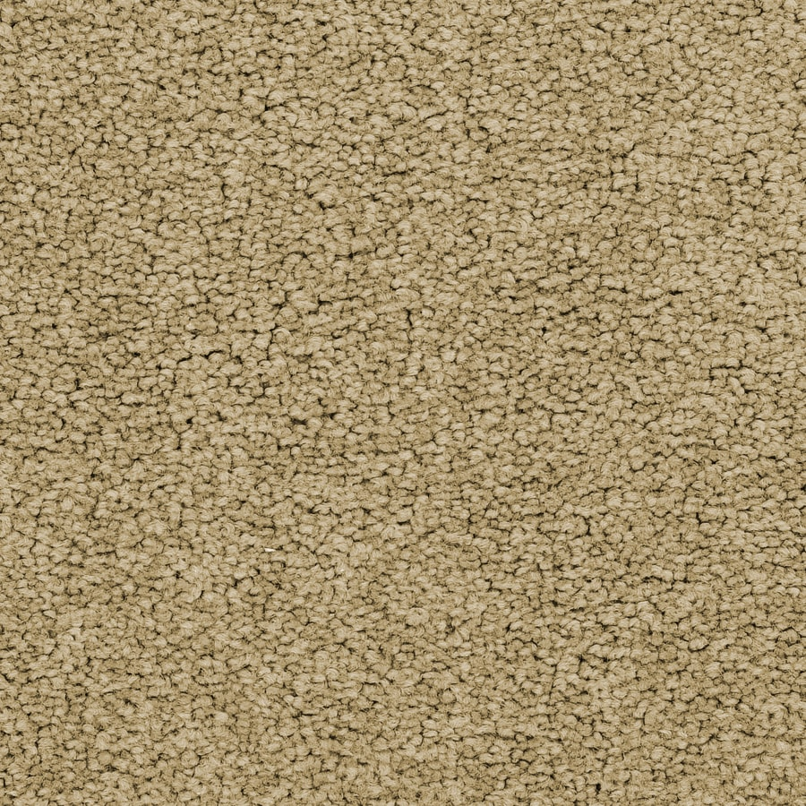 STAINMASTER Active Family Astral 12-ft W x Cut-to-Length Nova Textured Interior Carpet