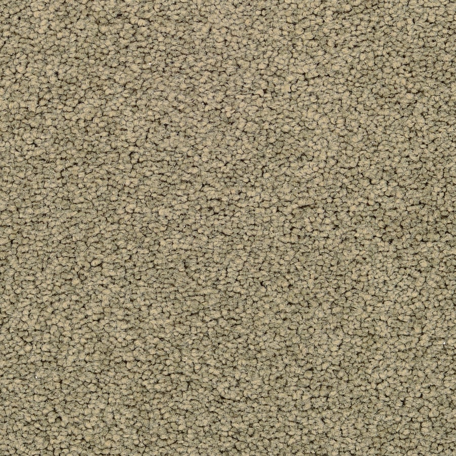 STAINMASTER Active Family Stellar Lantana Textured Interior Carpet