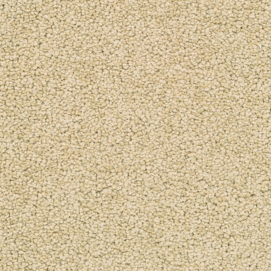 STAINMASTER Active Family Stellar 12-ft W x Cut-to-Length Eggplant Textured Interior Carpet