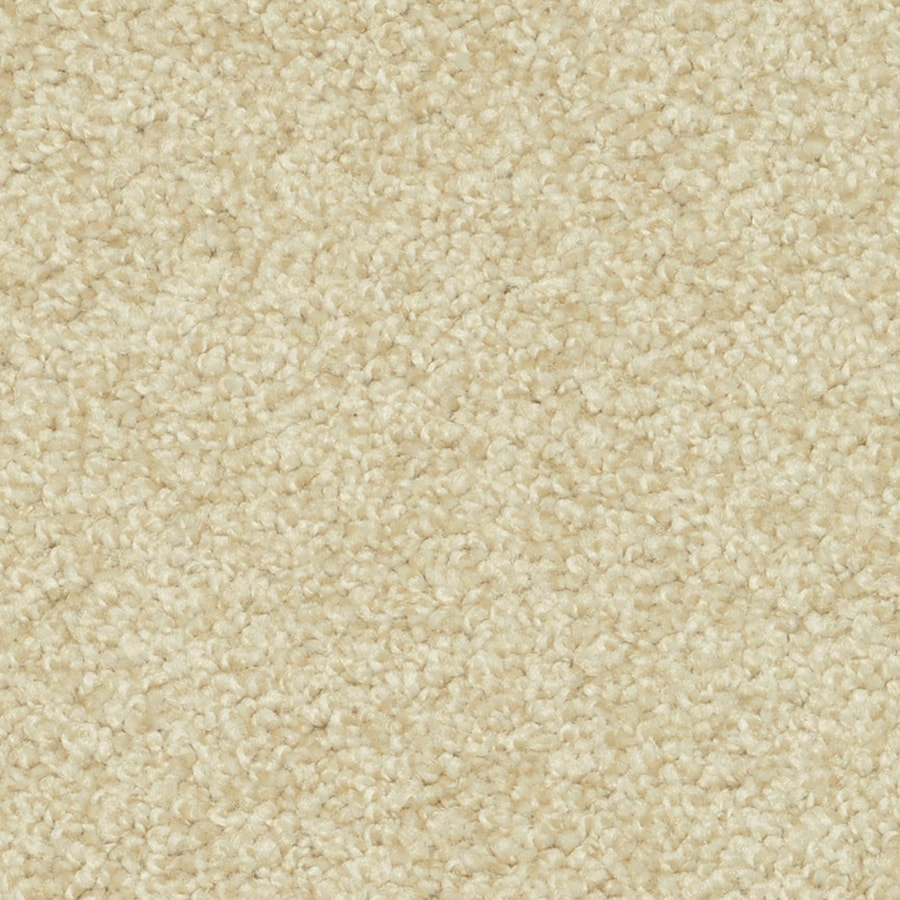 STAINMASTER PetProtect Day Trip Escape Shag/Frieze Interior Carpet