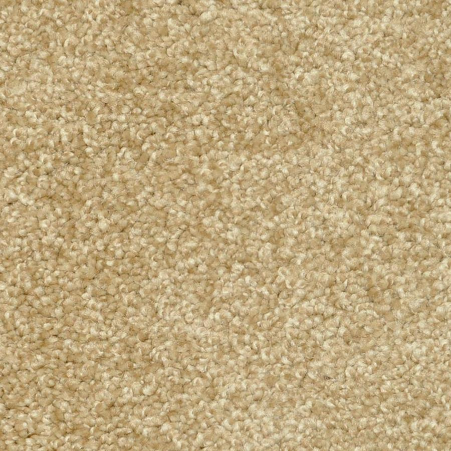 STAINMASTER PetProtect Day Trip 12-ft W x Cut-to-Length Rejuvinate Shag/Frieze Interior Carpet