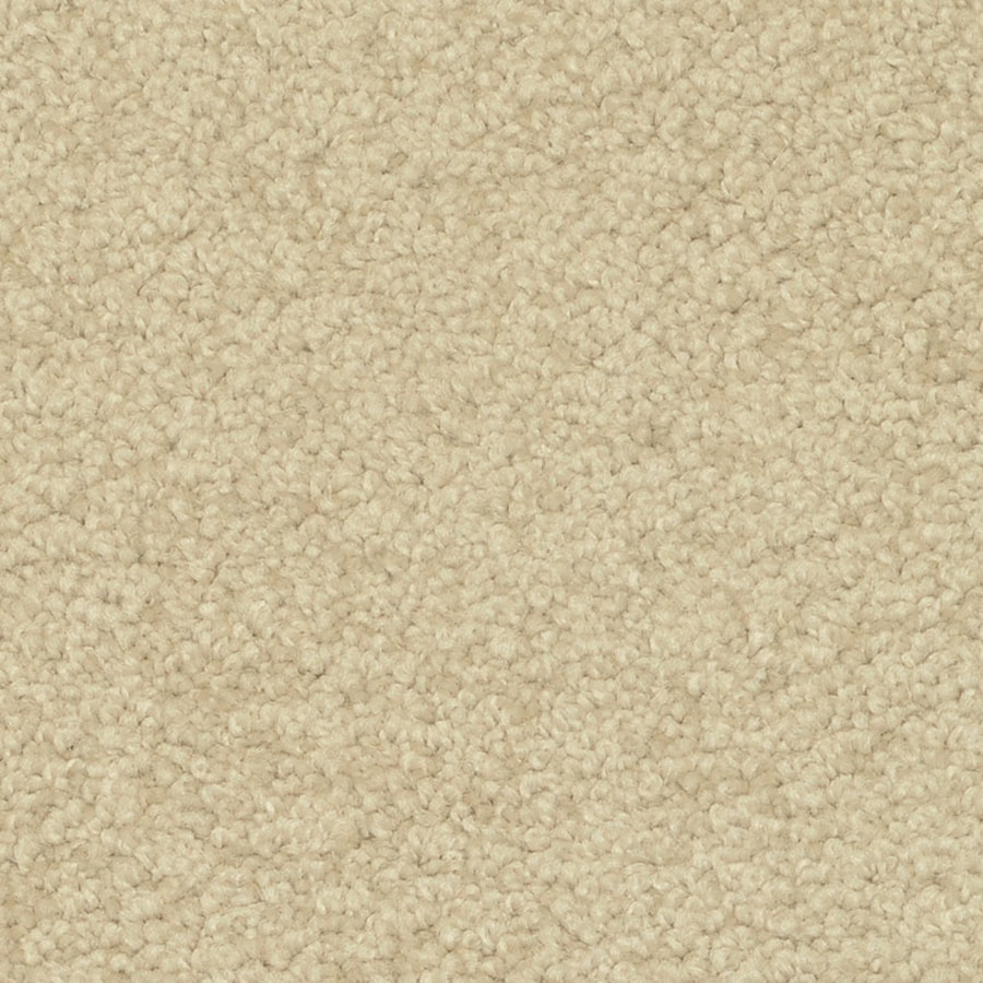 STAINMASTER PetProtect Day Trip Tranquil Shag/Frieze Interior Carpet