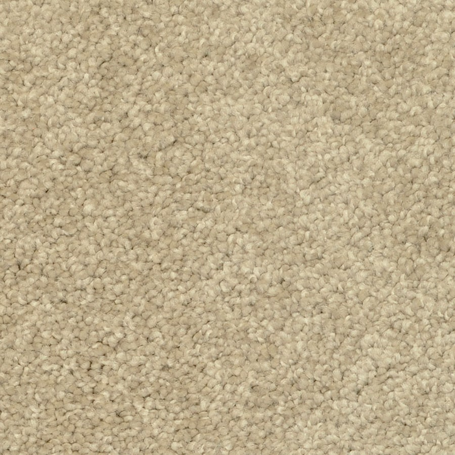 STAINMASTER Petprotect Day Trip Hot Stones Shag/Frieze Interior Carpet