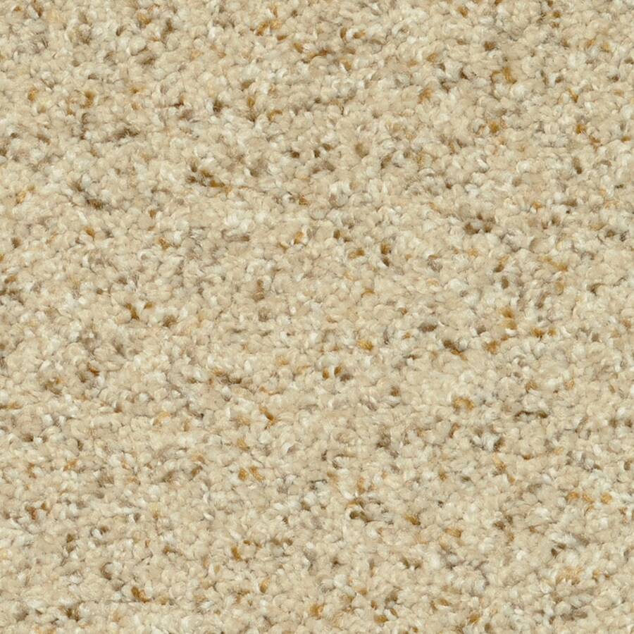 STAINMASTER PetProtect Day Trip 12-ft W x Cut-to-Length Relax Shag/Frieze Interior Carpet