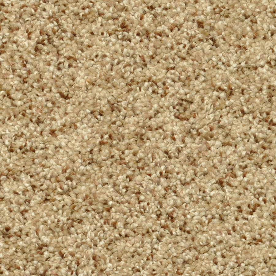 STAINMASTER PetProtect Day Trip 12-ft W x Cut-to-Length Therapeutic Shag/Frieze Interior Carpet