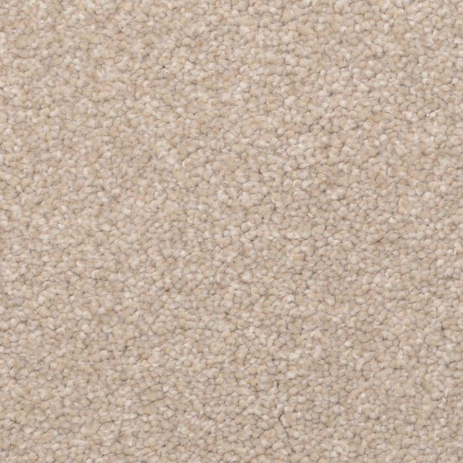 STAINMASTER PetProtect Excursion Bellview Shag/Frieze Interior Carpet