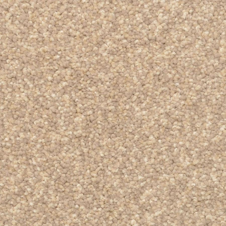 STAINMASTER PetProtect Excursion Ocala Shag/Frieze Interior Carpet