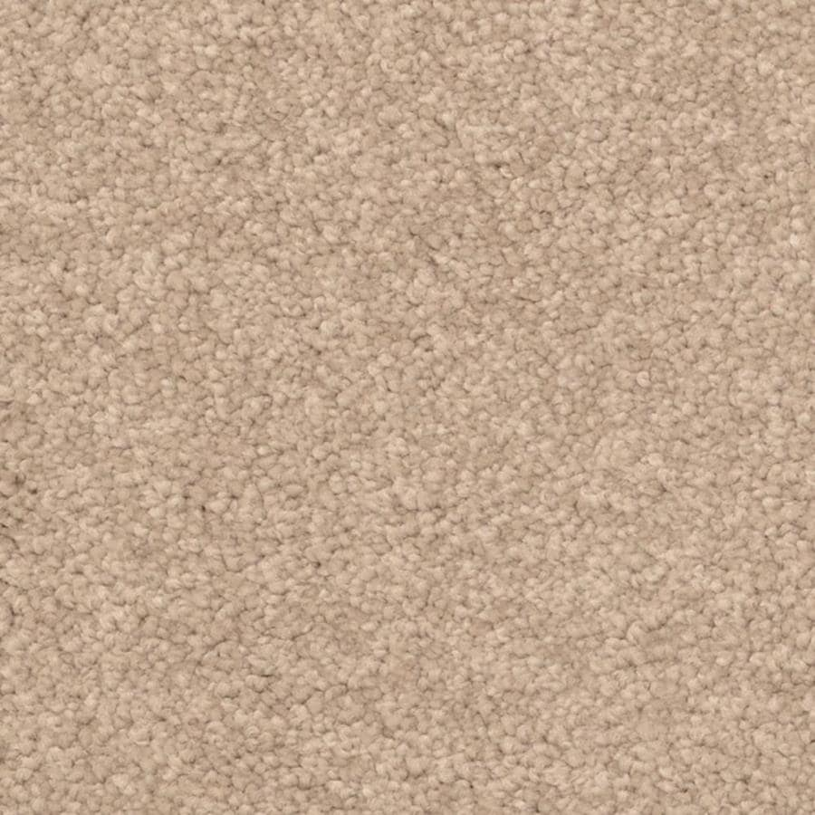 STAINMASTER PetProtect Excursion Palm Bay Shag/Frieze Interior Carpet