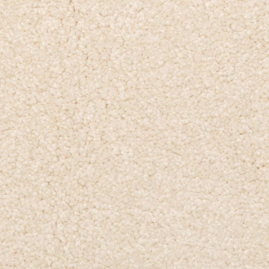 STAINMASTER PetProtect Excursion Deltona Shag/Frieze Interior Carpet