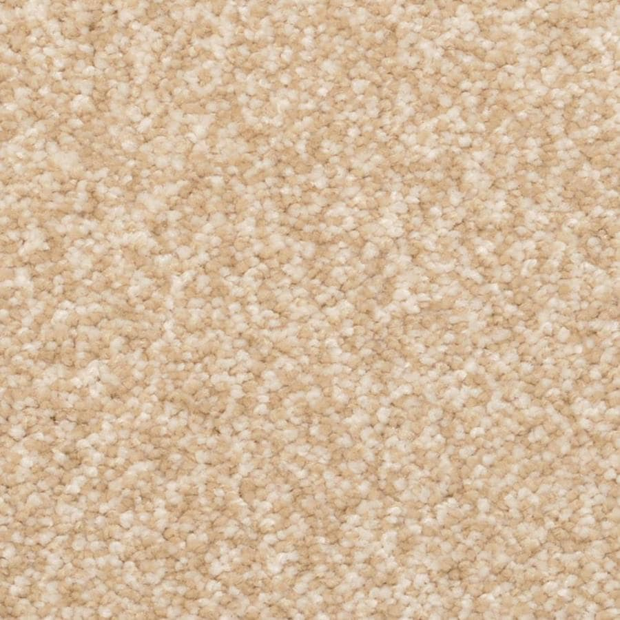 STAINMASTER Petprotect Excursion Inverness Shag/Frieze Interior Carpet